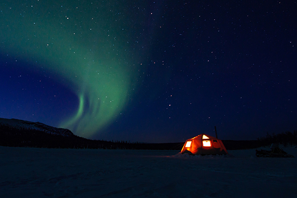 Northern Light Night